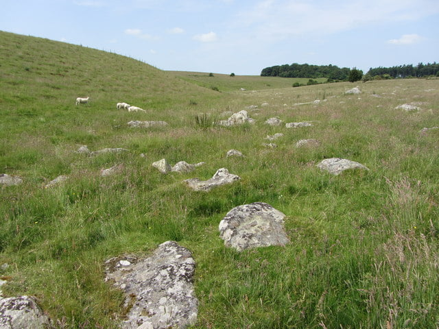 Sarsen stones on Fyfield Down, twenty miles north of Stonehenge