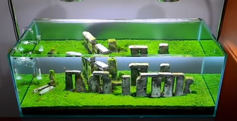 Buy Stonehenge Models: Screenshot 2020 10 03 104326 800x411  - Fish tank stones - Fish tank stones