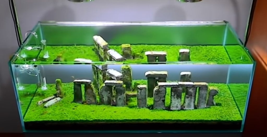 Buy Stonehenge Models: Screenshot 2020 10 03 104326  - Fish tank stones -